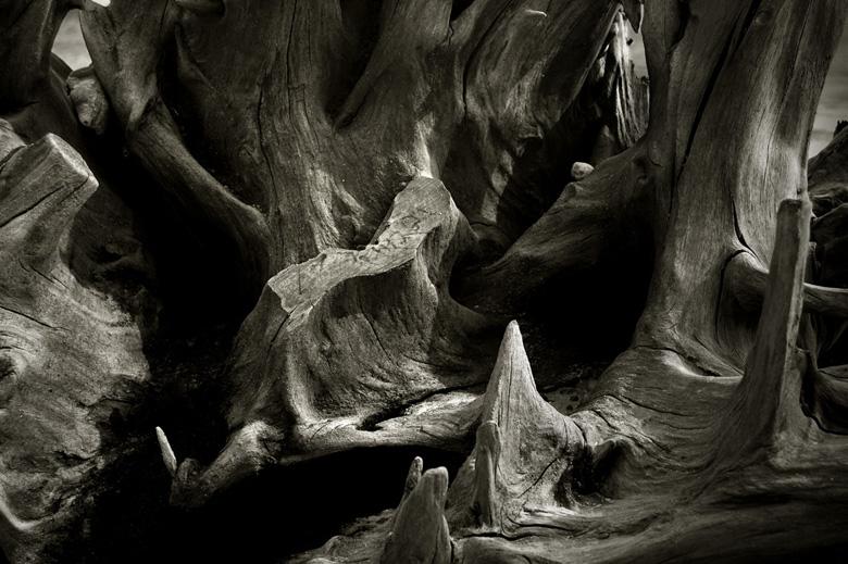-  Jeremy Webb Photography